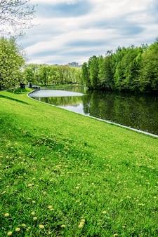 Grünes ufer eines reservoirs im löwenzahn