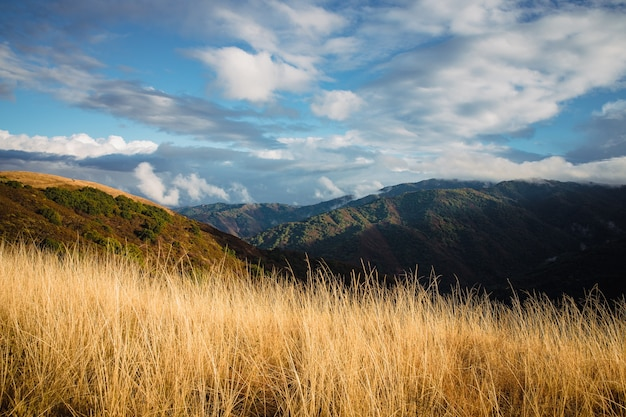 Grünes und braunes grasfeld nahe berg unter weißen wolken und blauem himmel während des tages