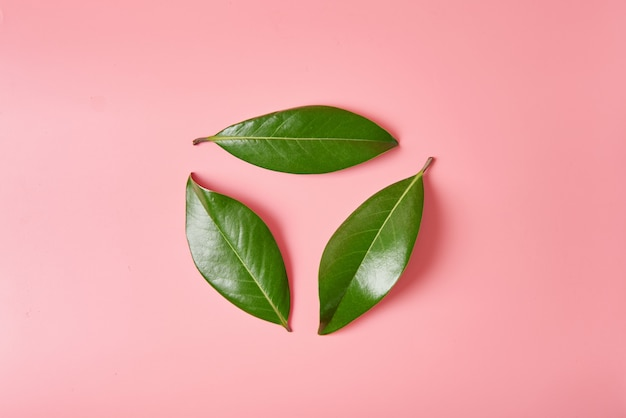 Grünes urlaublogo bereiten zeichen oder in form des wiederverwertungssymbols auf, das von den blättern der magnolie gemacht wird