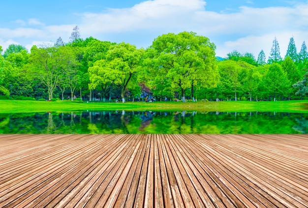 Grünes wasser landschaft sonne im freien form rasen