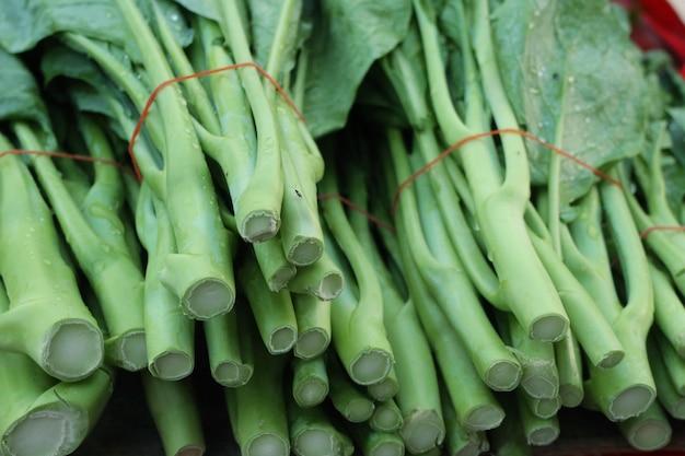 Grünkohl auf dem markt