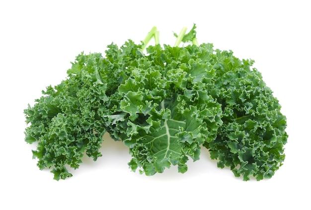 Grünkohl blattsalat gemüse isoliert auf weißem hintergrund