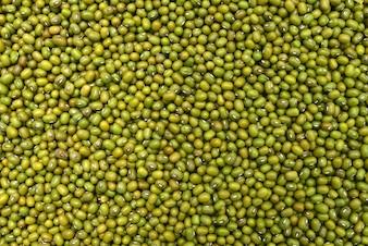 Grüne Bohnen Textur