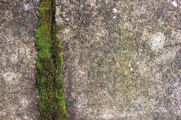 Grunge-wand hochdetaillierter strukturierter hintergrund