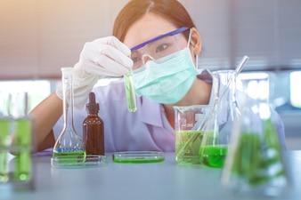 Grünkräutermedizin-Forschungsentdeckungsimpfstoff am Wissenschaftslabor