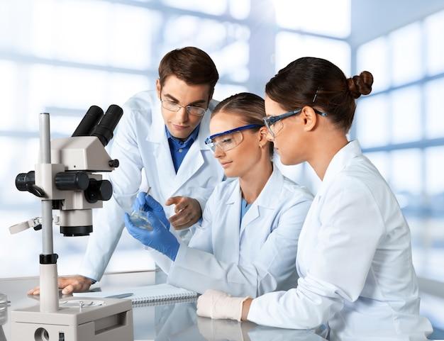 Gruppe der im labor arbeitenden wissenschaftler