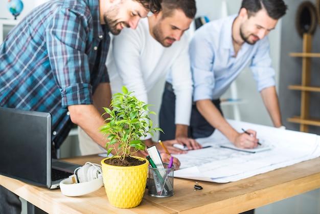 Gruppe des männlichen architekten arbeitend an plan mit blumentopf auf schreibtisch
