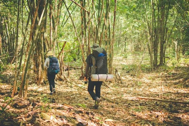 Gruppe im wald wandern, reise im berg für das kampieren am sonnigen tag mit farbeffekt.