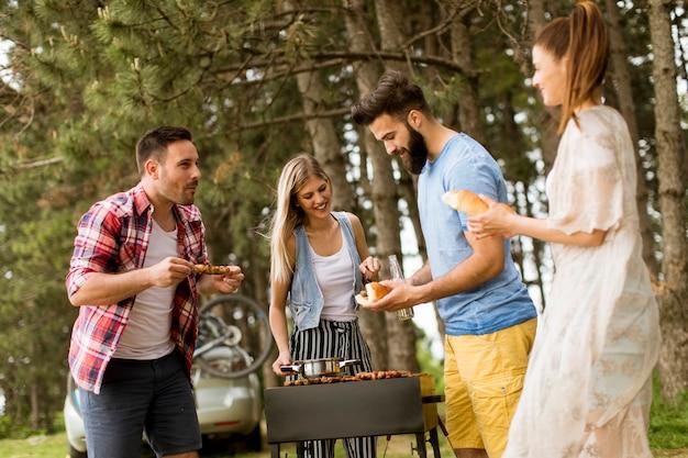 Gruppe junge leute, die grillparty in der natur genießen