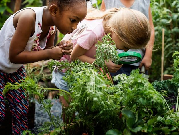 Gruppe verschiedene kinderlernumgebung am bauernhof