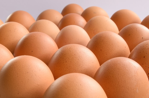 Gruppe von eiern