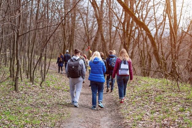 Gruppe von freunden, die mit rucksäcken im frühlingswald von hinten gehen