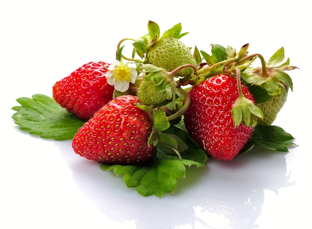 Gruppe von frischen erdbeeren mit großem blatt auf weiß