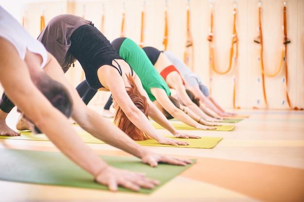 Gruppe von menschen, die yoga nach unten gerichtete hundehaltung auf matten im studio tun