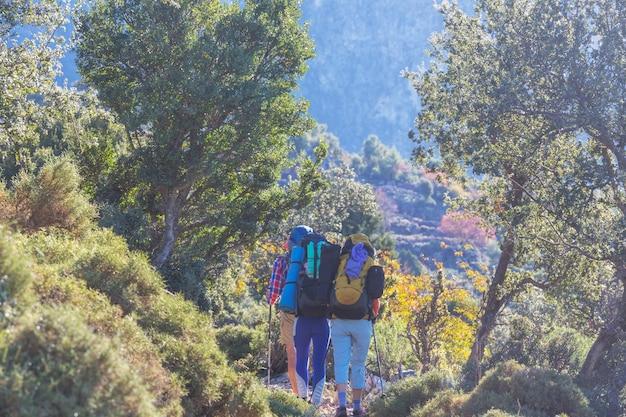 Gruppe von rucksacktouristen, die in den bergen wandern, im freien aktiven lebensstil reisen abenteuerabenteuer reisefreiheit sommerlandschaft wanderkonzept