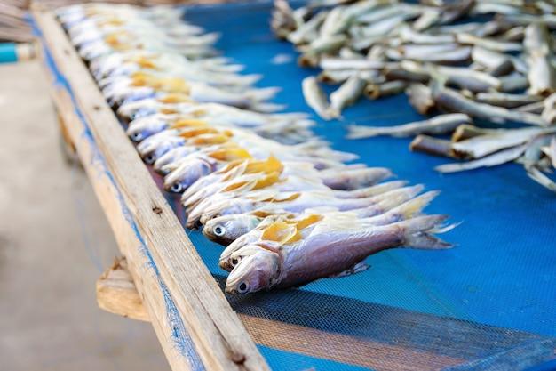 Gruppe von seefischen getrocknet auf netzen zum verkauf an touristen auf dem markt.