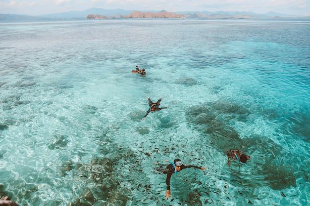 Gruppe von touristen, die auf dem transparenten meerwasser schwimmen und schnorcheln