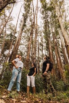 Gruppe von touristen, die die bäume im dschungel betrachten. leute, die durch den dschungel gehen. konzept von tourismus und dschungel.