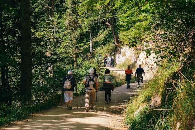 Gruppe von touristen, die in einer bergstraße gehen
