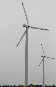 Gruppe von windmühlen zur erzeugung von erneuerbarer elektrischer energie.