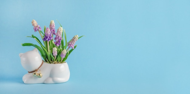 Grußkartenfahne, zusammensetzung mit katze und frühlingsblumen auf blauem hintergrund mit kopienraum