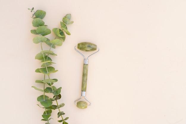 Gua sha, gesichtsmassage grüner jaderoller aus naturstein mit natürlichem eukalyptus, kopierraum