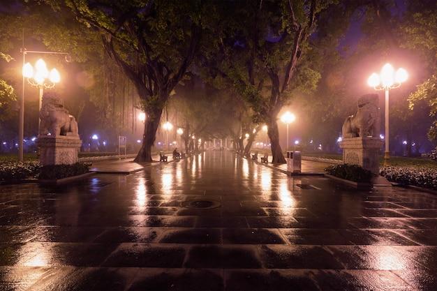 Guangzhou volkspark mit nebel in der nacht, china