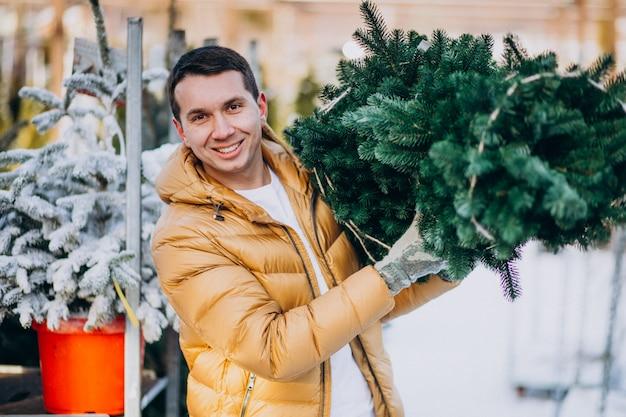 Gut aussehender mann, der einen weihnachtsbaum in einem gewächshaus wählt
