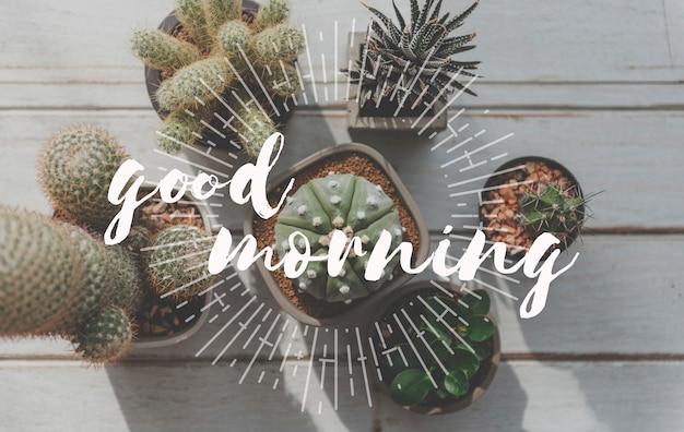 Guten morgen wort mit kaktushintergrund.