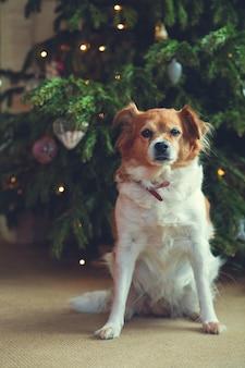 Guten rutsch ins neue jahr, weihnachten, feiertage und feier, nettes hundehaustier im raum der weihnachtsbaum