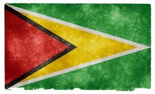 Guyana grunge flag