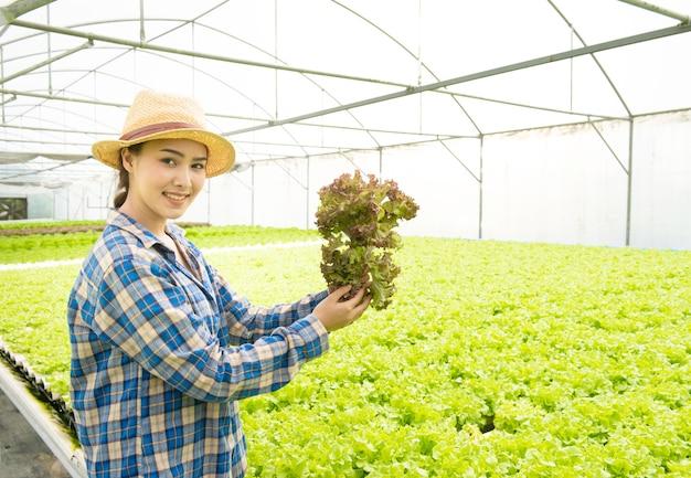 Hände der asiatischen jungen frau, die spinat halten