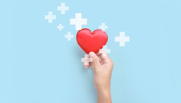 Hände, die ein rotes herz halten spendenkonzepte für die herzgesundheit