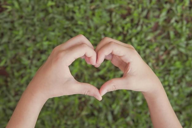 Hände, die herzform über grünem gras machen