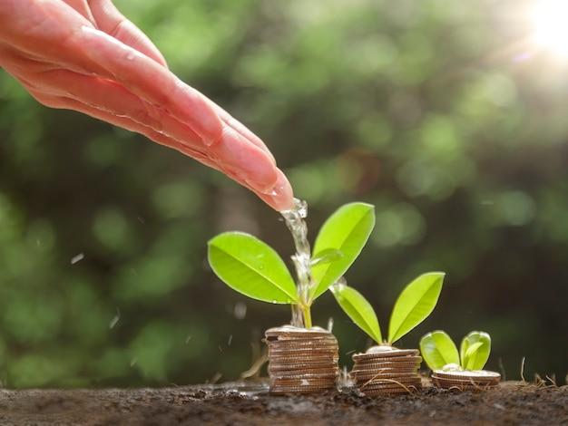 Hände gießen wachsende pflanzen auf münzen. handbewässerung der pflanzen, die auf einem haufen von münzen wachsen, die auf dem boden gestapelt sind. finanz- und betriebswirtschaftliches konzept