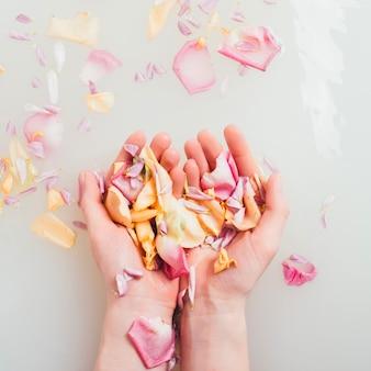 Hände halten blütenblätter im wasser