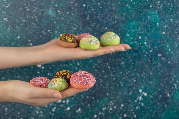 Hände halten bunte süße kleine donuts mit streuseln.