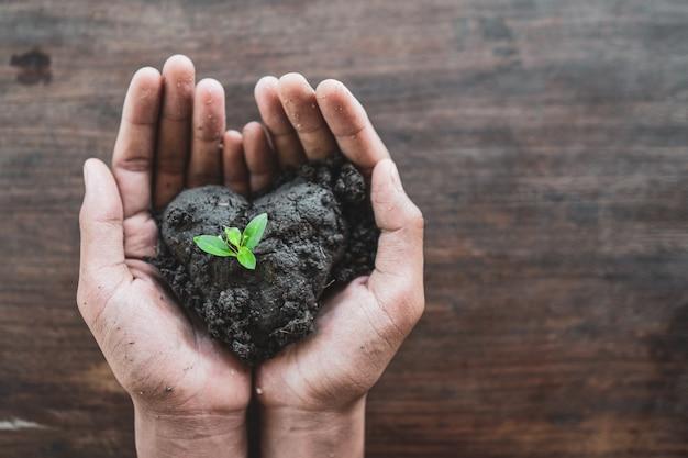 Hände halten erde und boden mit neuem pflanzenwachstum
