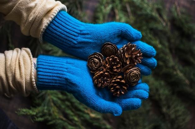 Hände in den handschuhen, die nadelbaumkegel halten