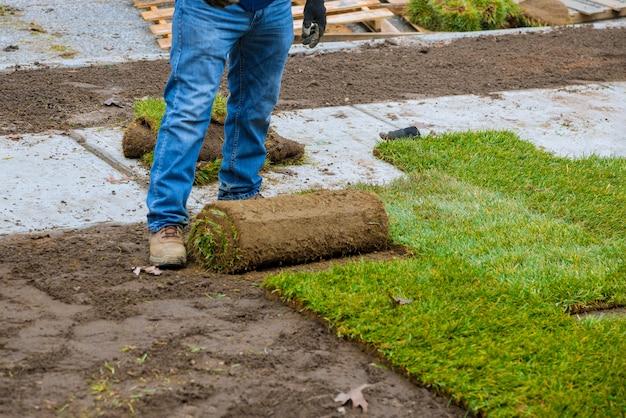 Hände in der gartenarbeit, die das grüne gras, installierend auf den rasen legt.