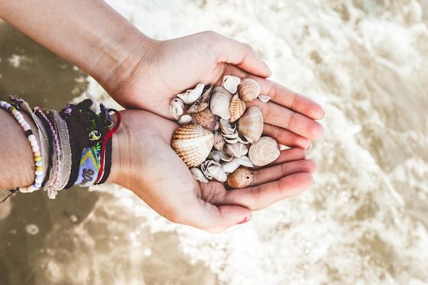 Hände mit muscheln im meer