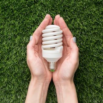 Hände mit ökologischer glühbirne