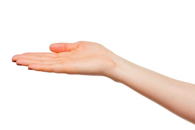 Hände nehmen geste der offenen handfläche zum festhalten auf weiß, isoliert