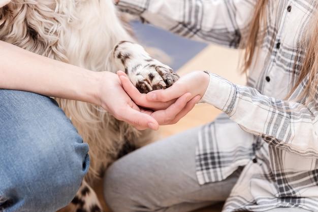 Hände und pfoten aller familienmitglieder. mutter, tochter und hund nehmen gemeinsam die hände