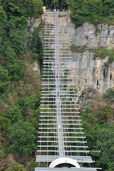 Hängebrücke in der natur