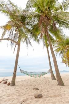 Hängematte auf einem palmesonnenuntergang grellen glanz des sonnenseeozeanhimmel-ufersandes