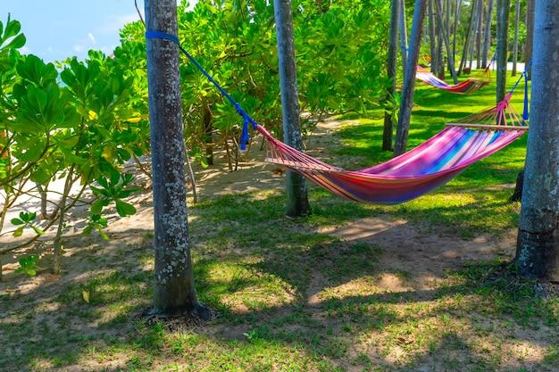 Hängematte zwischen palmen am tropischen strand. paradise island für urlaub und entspannung