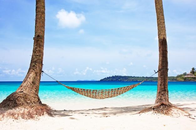 Hängematte zwischen palmen am wunderschönen tropischen strand