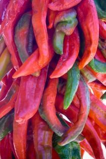 Hängen chilis