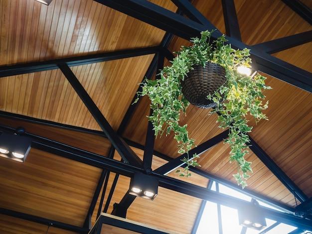 Hängender pflanzenkorb mit grünen blättern auf der schwarzen eisenkonstruktion unter der holzdachdekoration mit deckenlampe im modernen gebäude.